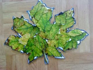 El oto o - Decorar hojas de otono ...